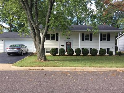 Franklin County Single Family Home For Sale: 462 Manion