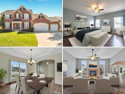 St Charles Single Family Home For Sale: 645 Sterling Terrace Drive