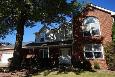 Swansea Single Family Home For Sale: 1709 Creekside Drive