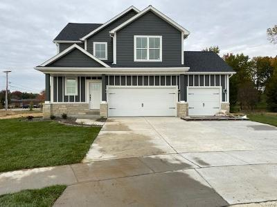 Mascoutah New Construction For Sale: 716 Mortar Street
