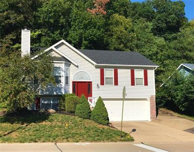 Valley Park Single Family Home For Sale: 37 Wynstay Avenue