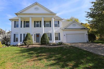O'Fallon Single Family Home For Sale: 7053 Black Horse Drive