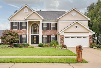 Dardenne Prairie Single Family Home For Sale: 7253 Westfield Ct.