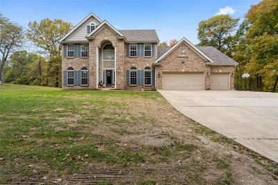 St Charles County Single Family Home For Sale: 133 Shady Creek Lane