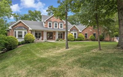 Single Family Home For Sale: 18101 Baskin Farm Drive