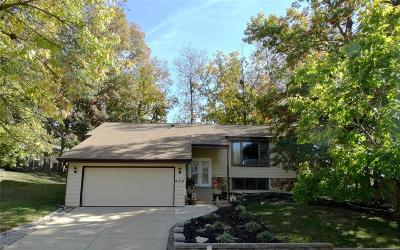 Single Family Home For Sale: 424 Holly Garden Court