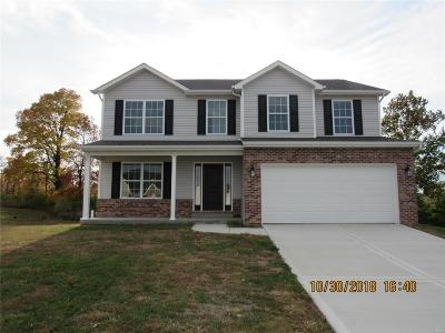 Fairview Heights Single Family Home For Sale: 9208 Rivindale Court