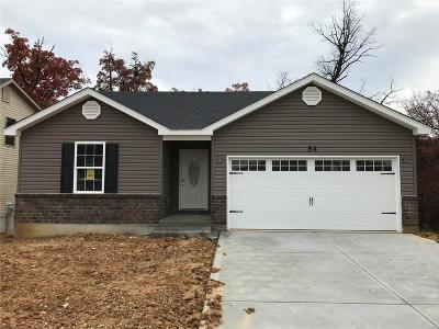 Wentzville Single Family Home For Sale: Huntleigh Park Court