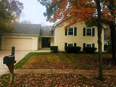 Chesterfield Single Family Home For Sale: 15027 Isleview Dr.,