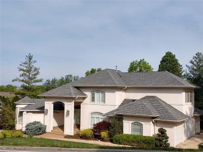 Sunset Hills Single Family Home For Sale: 12617 Rott Road