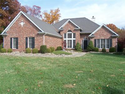 Godfrey IL Single Family Home For Sale: $450,000