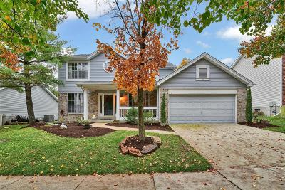 Single Family Home For Sale: 1533 Summer Chase Lane