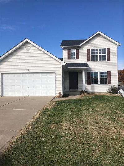 Lincoln County Single Family Home For Sale: 75 Eagles Bluff Drive