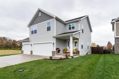 Edwardsville, Glen Carbon, Maryville, Troy, Collinsville, Caseyville, Fairview Heights, O'fallon, Belleview Single Family Home For Sale: 1542 North Parc Grove