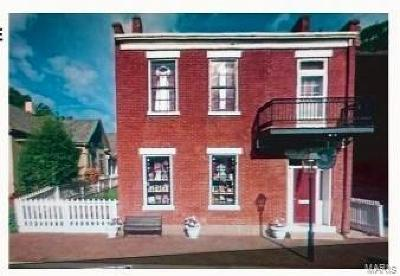 Franklin County, Gasconade County, Jefferson County, Lincoln County, Montgomery County, Pike County, St Charles County, St Louis City County, St Louis County, Warren County Commercial For Sale: 419 Main South