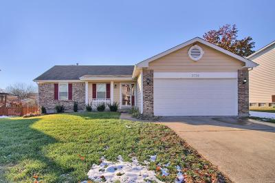 Single Family Home For Sale: 3738 Affirmed Drive