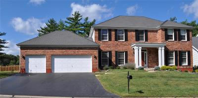 Chesterfield Single Family Home For Sale: 1609 Wilson Forest View Court