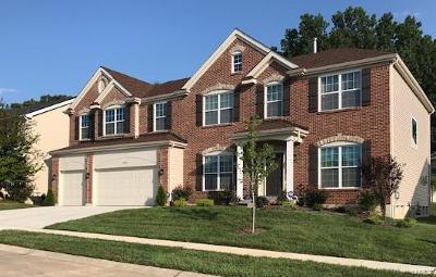 St Louis MO Single Family Home For Sale: $680,000