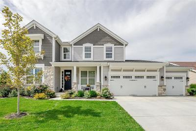 O'Fallon Single Family Home For Sale: 200 Willow Park Drive