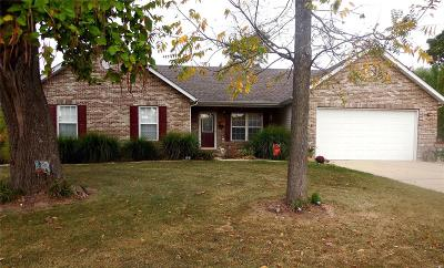 Franklin County Single Family Home For Sale: 225 Ridge Run