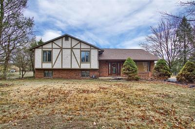Single Family Home For Sale: 8634 State Route 163