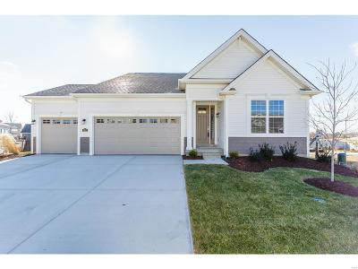 Cottleville Single Family Home For Sale: 902 Finberry Grove Court