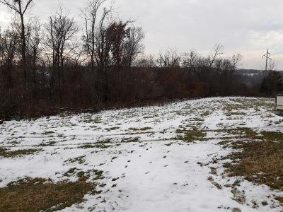Hannibal MO Residential Lots & Land For Sale: $25,000