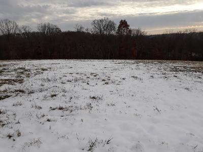 Hannibal MO Residential Lots & Land For Sale: $30,000
