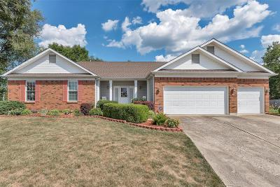 Wentzville Single Family Home For Sale: 509 Spring Meadow Xing