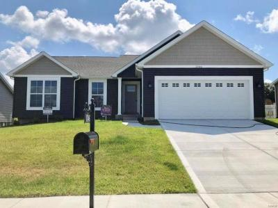 Jefferson County Single Family Home For Sale: 1046 Palisades Lane