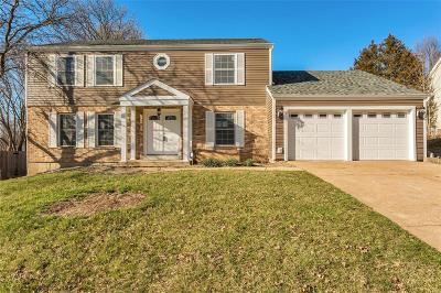Chesterfield Single Family Home For Sale: 15525 Country Ridge Drive