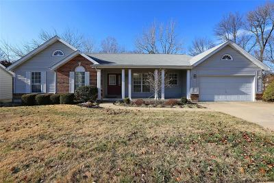 Single Family Home For Sale: 907 Zohner Court