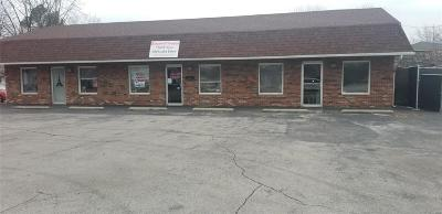 Granite City Commercial For Sale: 3901 Lake Drive