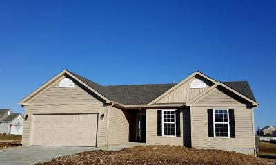 Troy Single Family Home For Sale: 2301 Central Park (Lot# 133) Drive