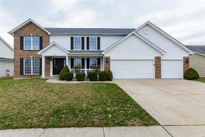 Single Family Home For Sale: 210 Strathmoor Way