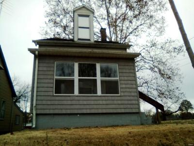 Belleville Single Family Home For Sale: 610 South 19th Street