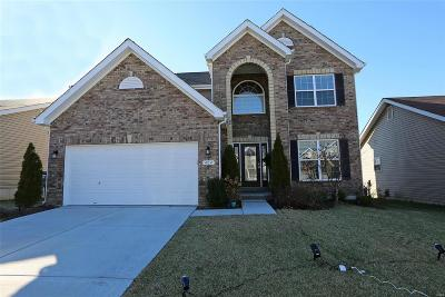 Lake St Louis Single Family Home For Sale: 404 Hollowgate Court