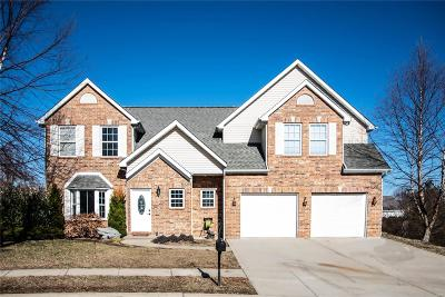Single Family Home For Sale: 736 Pines Way