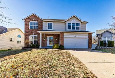 Single Family Home For Sale: 1439 Hawkins Corners Drive
