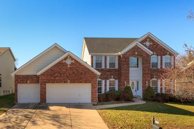 Chesterfield Single Family Home For Sale: 1137 Nooning Tree Drive