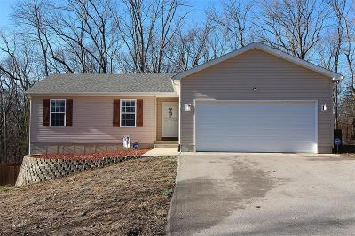 Catawissa, Robertsville Single Family Home For Sale: 6161 Willow Ford