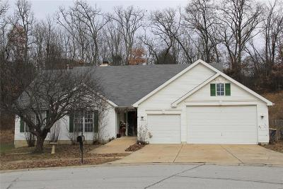 Single Family Home For Sale: 7340 Stream Valley Court