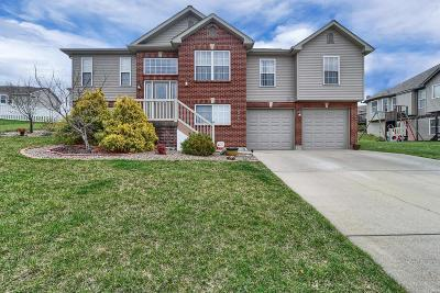 Franklin County Single Family Home For Sale: 2808 Thoroughbred Drive