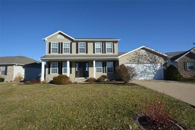 Wentzville Single Family Home For Sale: 208 Niagra Drive