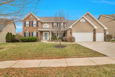 St Charles County Single Family Home For Sale: 228 Irish Hound Road