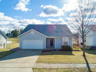 Collinsville Single Family Home For Sale: 110 Pine Hollow Lane