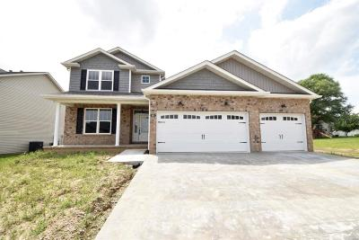 O'Fallon IL New Construction For Sale: $294,900