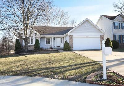 Single Family Home For Sale: 9373 Southtowne Farms Drive