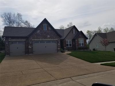Wentzville Single Family Home For Sale: 417 Cottage Grove Drive