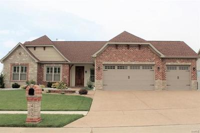 Wentzville Single Family Home For Sale: 3 Windsor Park Court